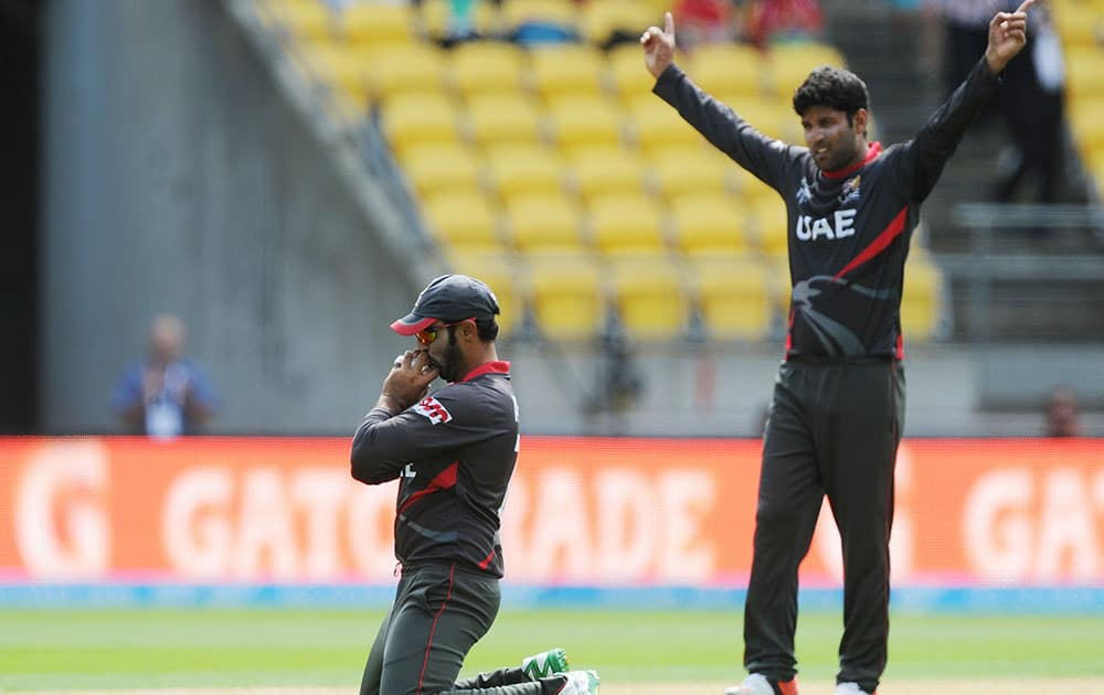 United Arab Emirates Muhammad Naveed kneels and kisses the ball after taking a catch to dismiss South African batsman Hashim Amla during their Cricket World Cup Pool B match in Wellington, New Zealand.