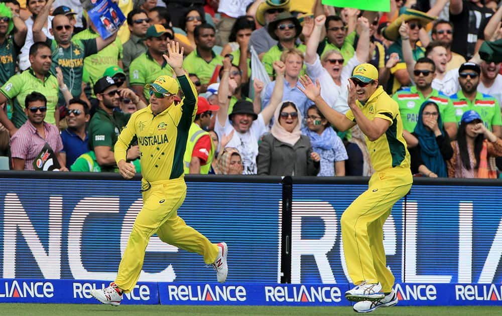 Australia's Aaron Finch, celebrates with teammate Mitchell Starc after taking a catch to dismiss Pakistan's captain Misbah Ul Haq during their Cricket World Cup quarterfinal match in Adelaide, Australia.