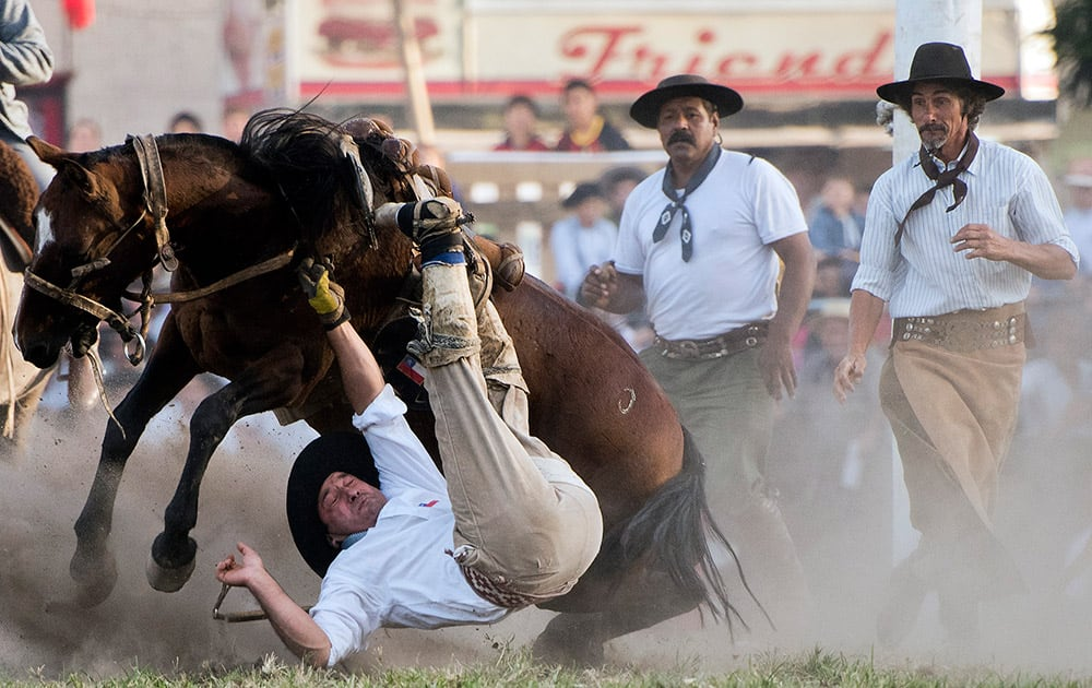 A South American cowboy known as a gaucho falls off a bucking wild horse during the Criolla del Prado rodeo in Montevideo, Uruguay.
