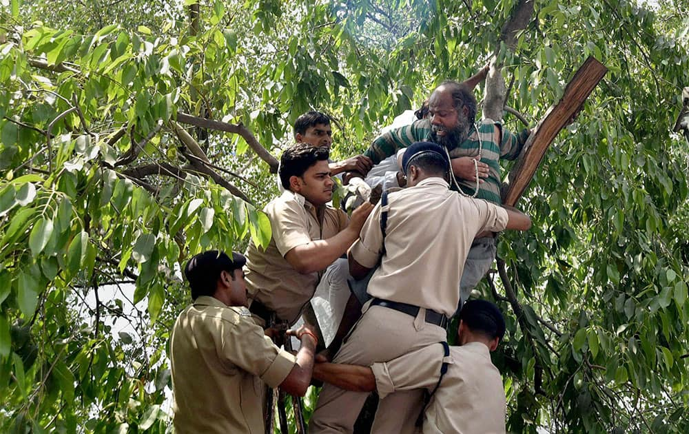 Police trying to bring down a person who climbed a tree during a protest by Youth Congress workers at Sansad Marg in New Delhi.