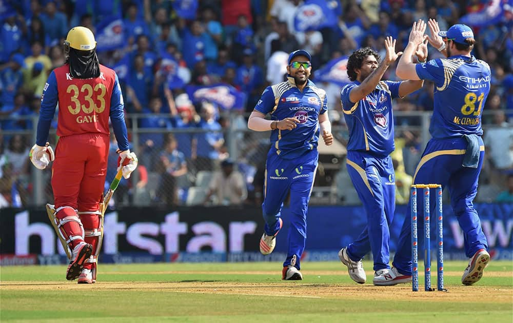 Mumbai Indians bowler Malinga celebrates a wicket of Royal Challengers Bangalore batsman Chris Gayle during an IPL T20 match played in Mumbai.