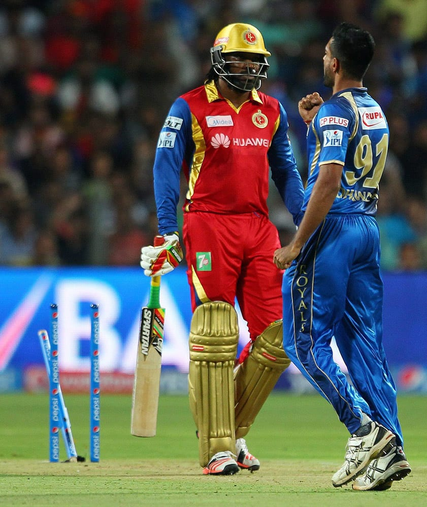 hawal Kulkarni of the Rajasthan Royals celebrates the wicket of Chris Gayle of the Royal Challengers Bangalore during the eliminator match of IPL in Pune.
