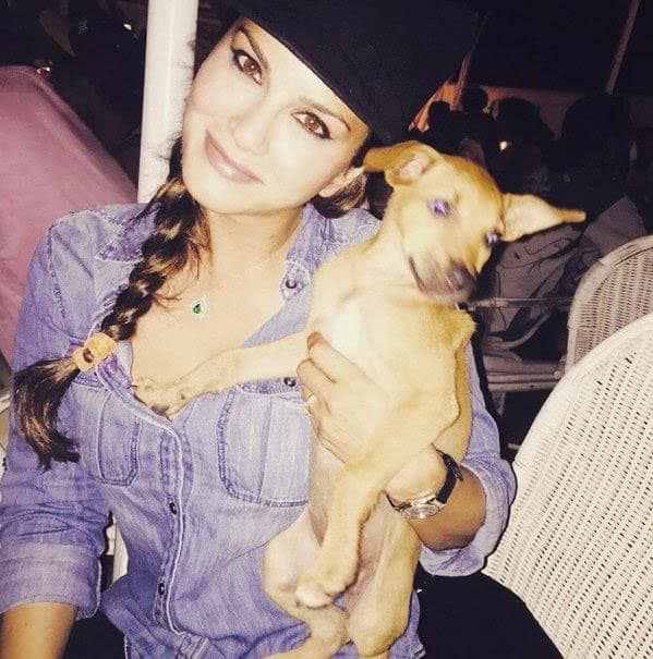 Zee Cinema :- 'Awww' pic of the day - @SunnyLeone with this cute puppy! -twitter