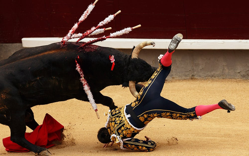 Spanish bullfighter Daniel Luque is tossed by a Juan Pedro Domeq's ranch fighting bull during a bullfight of the San Isidro fair Madrid, Spain.