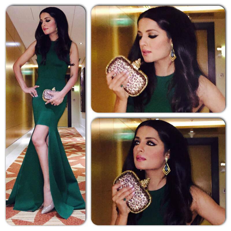Celina Jaitly :- #MostInfluential eve @MasalaMagazine Gown:@gauriandnainika Shoes:@REDValentino Earrings:Aquamarine Clutch:HouseofBio  -twitter