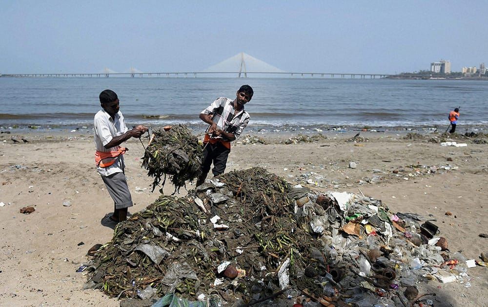 Municipality workers cleaning a beach on the eve of World Environment Day in Mumbai.