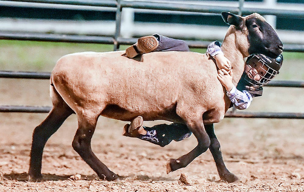 Keegan Sparks holds on during the mutton bustin' competition at the Garrard County Fair near Lancaster, Ky.