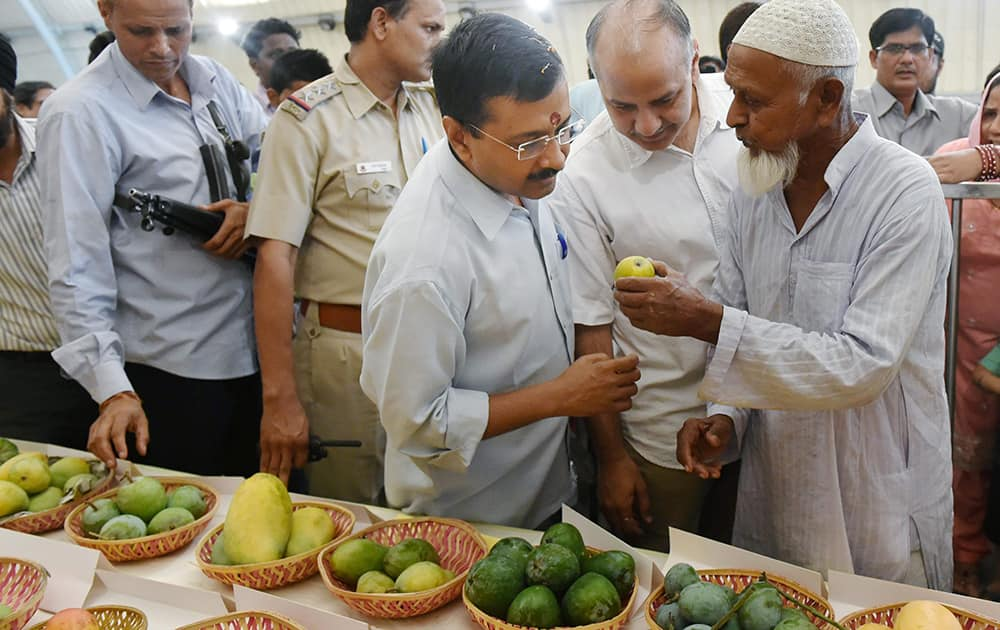 Delhi Chief Minister Arvind Kejriwal along with Dy CM Manish Sisodia having a look of varieties mangoes at the ongoing Annual Mango Festival 2015 at Janakpuri Dilli Haat in New Delhi.