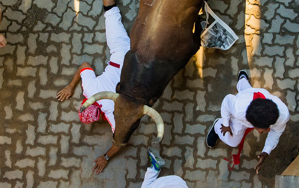 A Fuente Ymbro fighting bull runs over a reveler during the running of the bulls, at the San Fermin festival, in Pamplona, Spain.