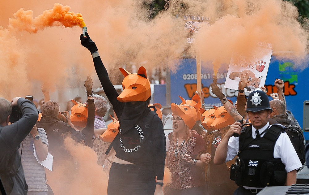 Protestors dressed as foxes demonstrate in front of the Houses of Parliament in London
