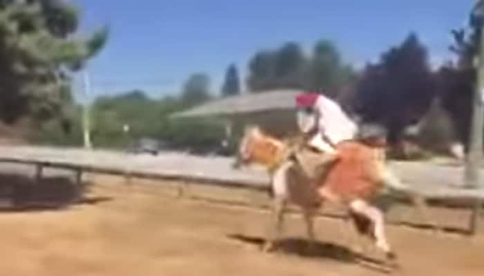 Watch: Sikh groom thrown off drugged horse during wedding procession
