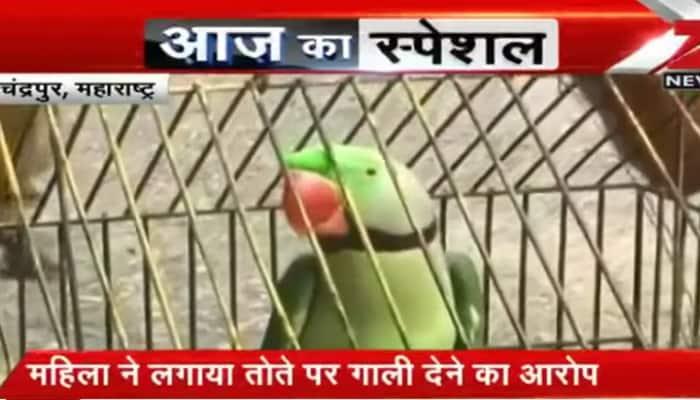 Shocking! Police detain 'abusive' parrot in Maharashtra