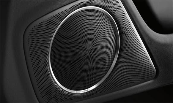 Bang & Olufsen Sound system.