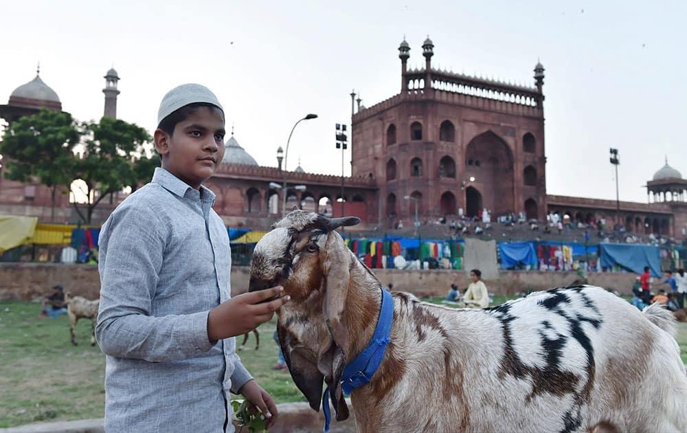 Goats on sale at a market near Jama Masjid during the festival of Eid al-Adha in New Delhi.