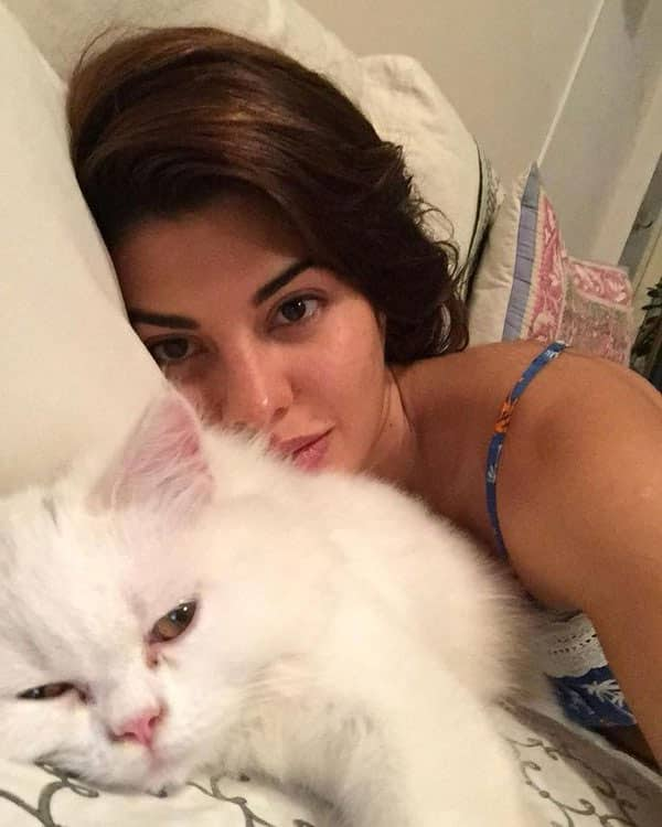 Let's make Diwali safe for our pets. @thebodyshopindia Share a message & selfie with your … http://ift.tt/1HcjU3t  - Twitter@Asli_Jacqueline