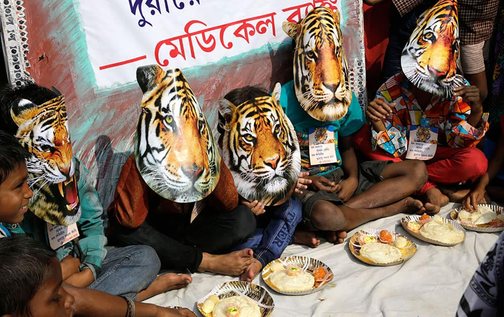 School boys wear tiger masks as they prepare to celebrate Bhai Dooj festival while spreading the awareness of saving the endangered tiger, in Kolkata.