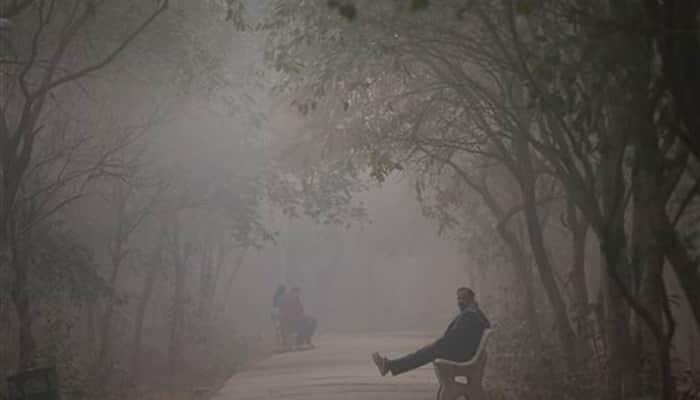 25 degrees in December! Where's the Delhi winter?   India News