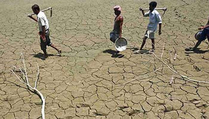 Drought-hit Indian farmers seek support in budget