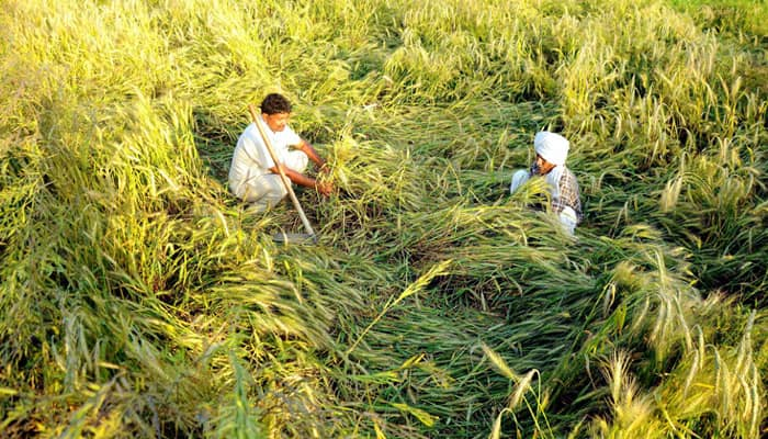 Govt clears 'life transforming' Rs 17,600-cr new crop insurance scheme for farmers