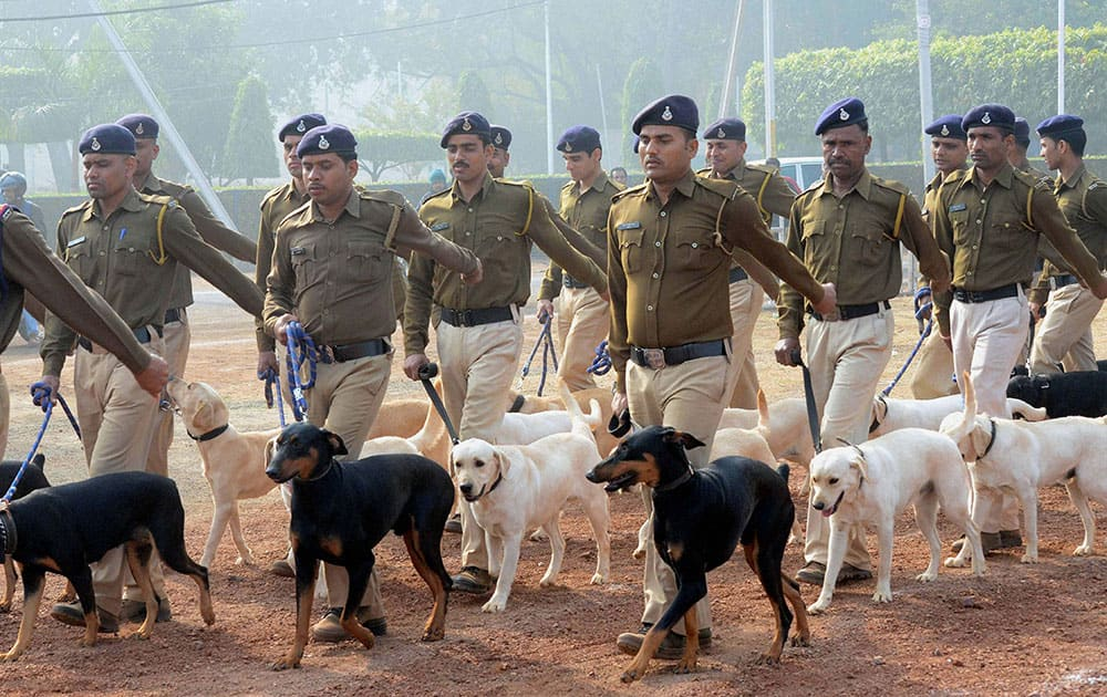 Madhya Pradesh police dog squad during a rehearsal for Republic Day celebrations in Bhopal.