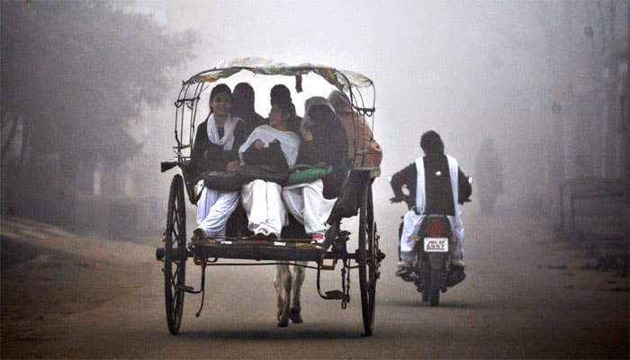 Cold wave, foggy weather affect life in north India