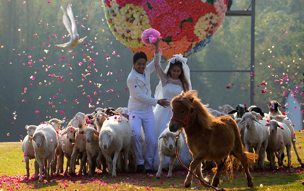 Thai groom Kittinant Suwansirirun holds the hand his bride Jintara Promachat away from a giant flower ball as a part of an adventure-themed wedding ceremony in Ratchaburi Province, Thailand.