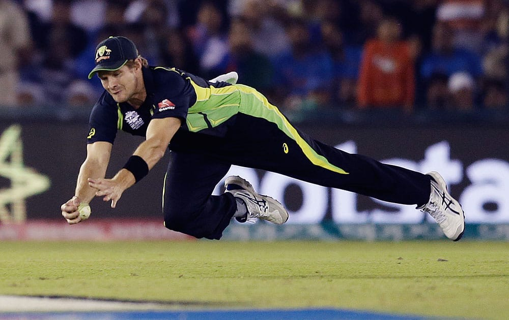 Australia's Shane Watson dives to take a catch to dismiss India's Yuvraj Singh during their ICC World Twenty20 2016 cricket match in Mohali.