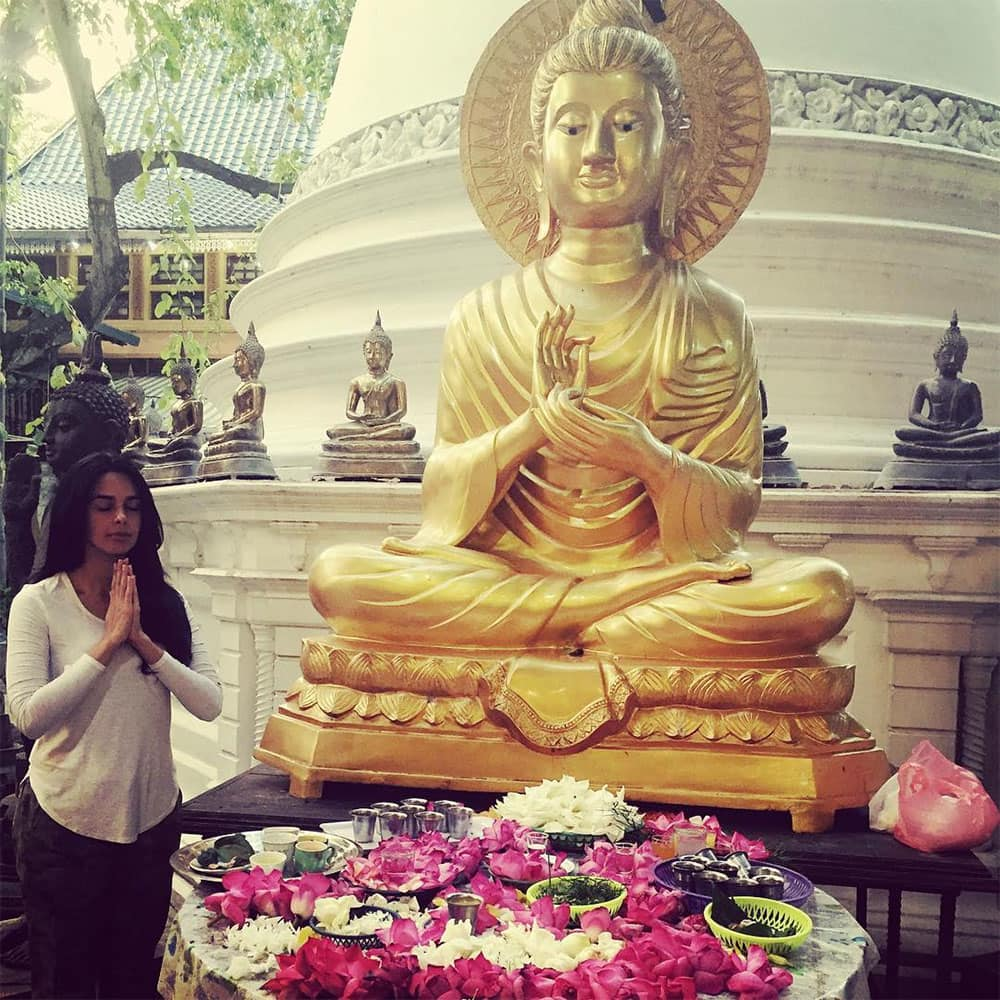 mallika sherawat :- Divine blessings and prayer for all #lordbuddha #divineguidance -instagram