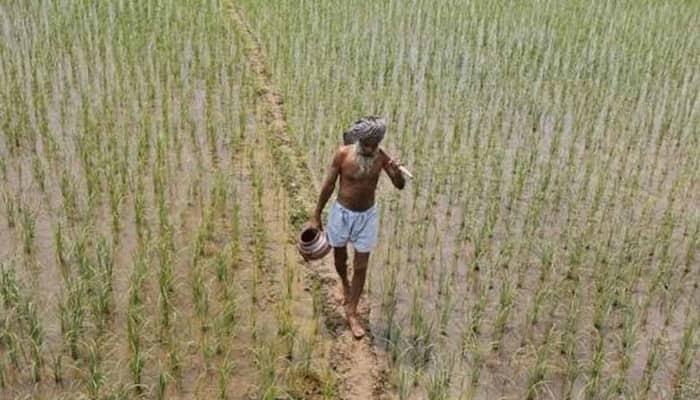 Govt taps KVKs to create awareness on crop insurance scheme