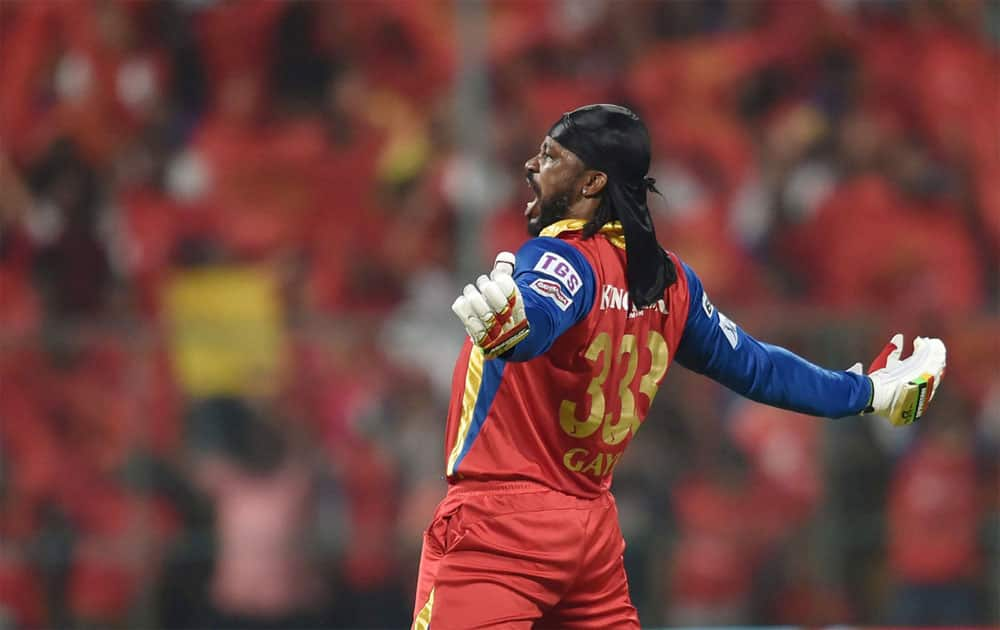 World Boss is still hungry: In a star-studded RCB line-up, Chris Gayle is still the world boss. The second World T20 title will only give the West Indian more confidence.