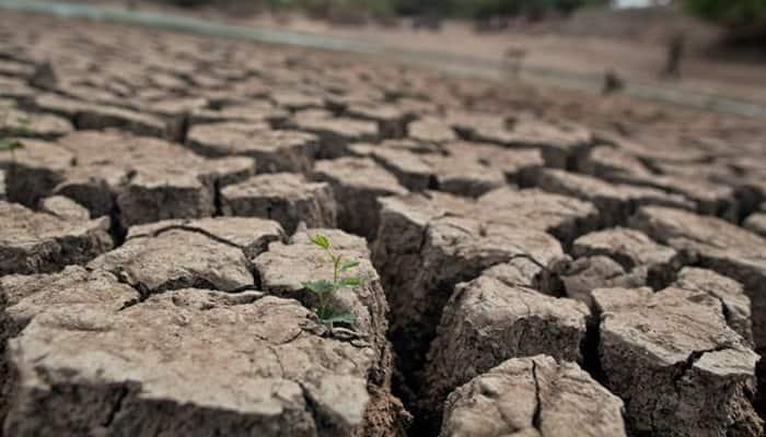 Water crisis: Section 144 imposed around kukadi canal in Maharashtra