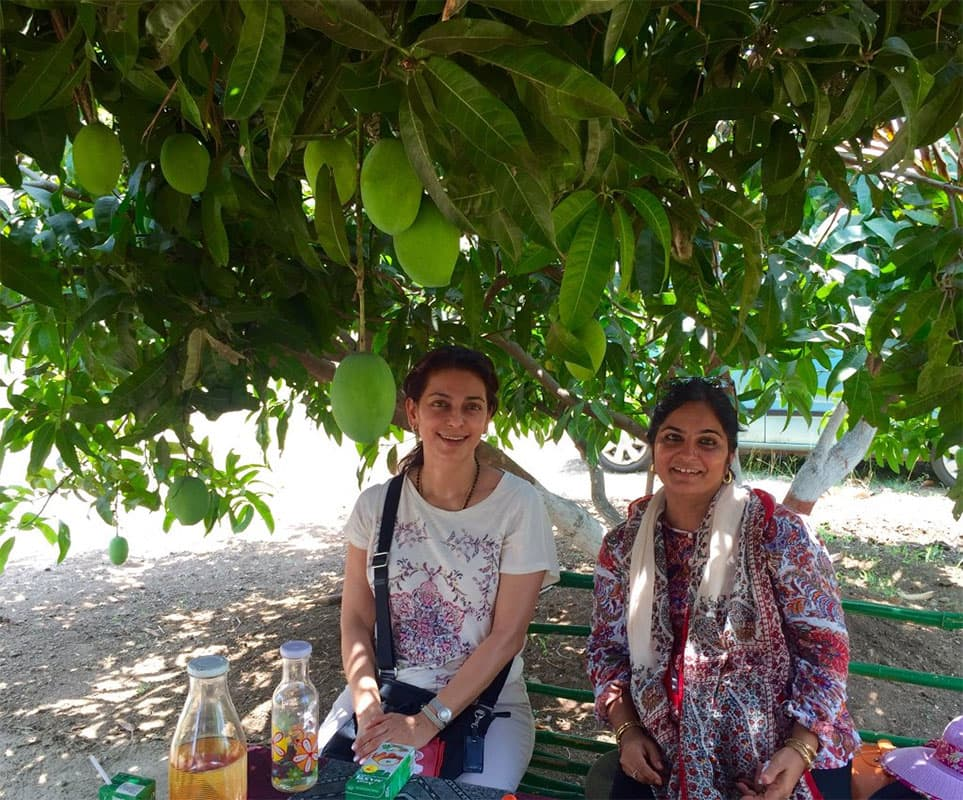 Check out the new organic farmers ..us ...!!At our  farm..see the size of mangoes on the trees..juusssstt lovely !! Twitter@iam_juhi