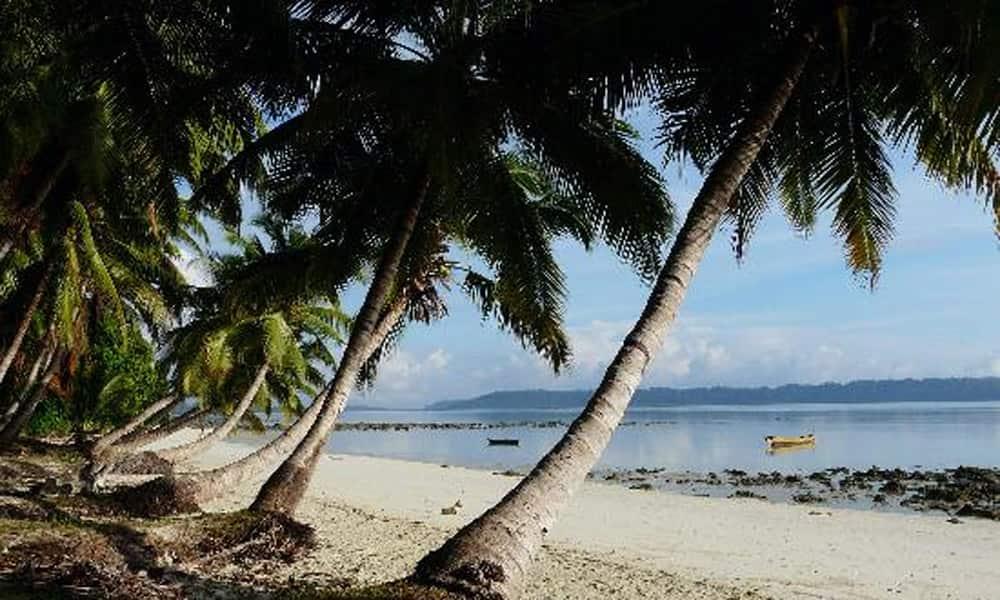 9. Havelock Island, Andaman and Nicobar Islands