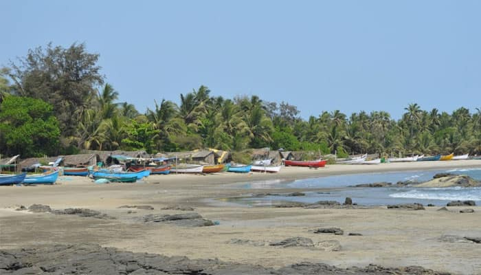 Goa's beautiful Morjim Beach – In Pics
