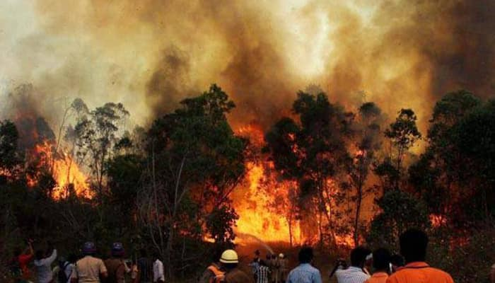 IAF choppers dump water to douse forest fires; Centre sends probe team to Uttarakhand