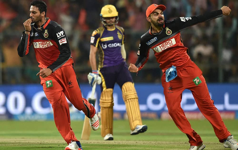 Royal Challengers Bangalore S Aravind celebrates the wicket of Gautam Gambhir during the IPL 2016 match against Kolkata Knight Riders in Bengaluru.