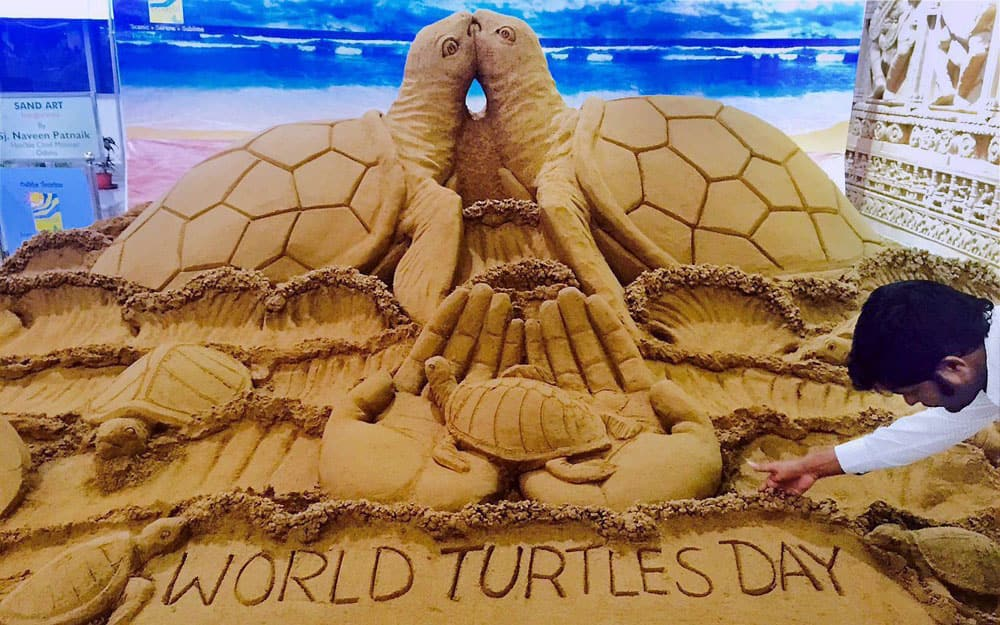 Sand artist Sudarsan Pattnaik creates sand sculpture on World Turtle Day (23rd May ) with message Love Us, at Bhubaneswar airport.