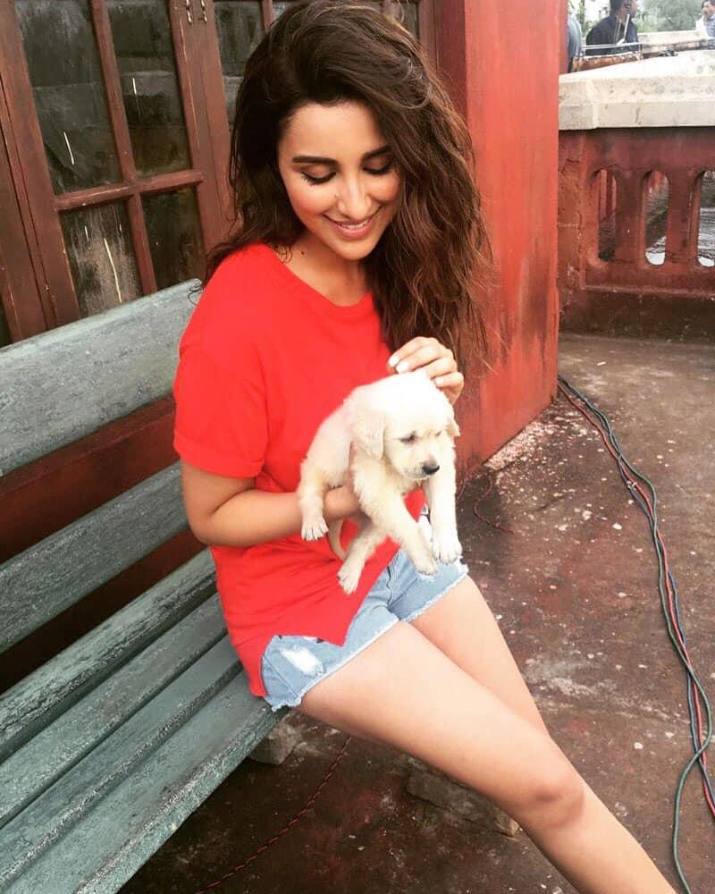 Parineeti Chopra @ParineetiChopra  :- Bindu's new friend - Devdas!! My filmy dog :)!! -twitter