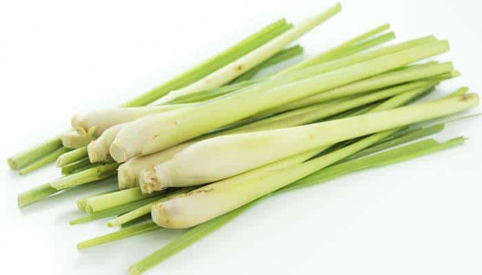 Lemongrass is normally added to tea and it is good for health. Drink a cup of lemongrass tea to prevent infections and improve your immunity.