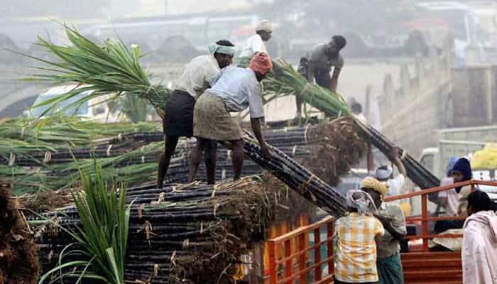 Food Ministry proposes 25% duty on sugar export to ensure sufficient supply