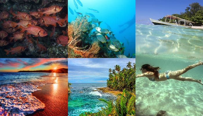 Planning an underwater getaway this summer? Check out top 5 destinations