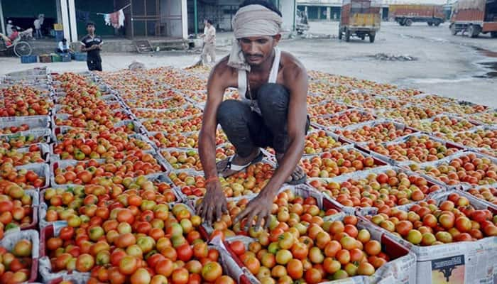 'Puree, ketchup demand up 40% as people give tomatoes a miss'