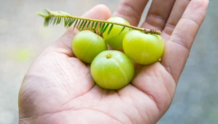 Indian gooseberry (amla) and lemon juice