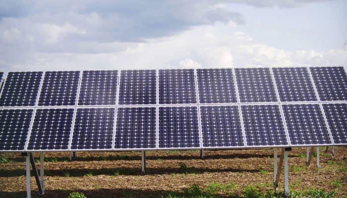 Here comes a solar cell that functions like a plant