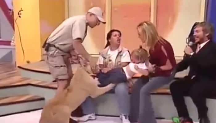 HORRIFYING VIDEO! Lion attacks, tries to eat screaming toddler on Mexican TV show; mother's reaction is unbelievable!