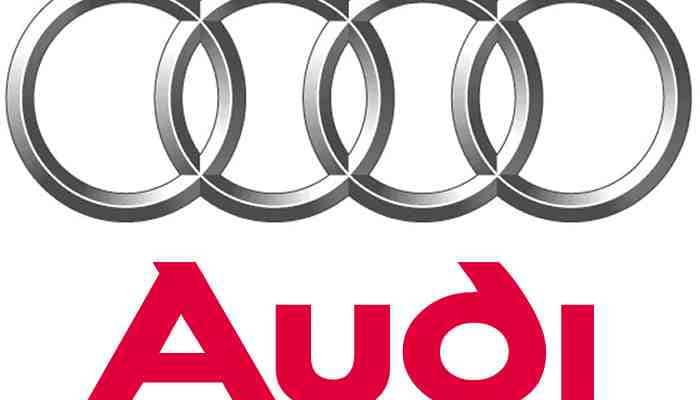 Audi to have petrol variants across portfolio by next year