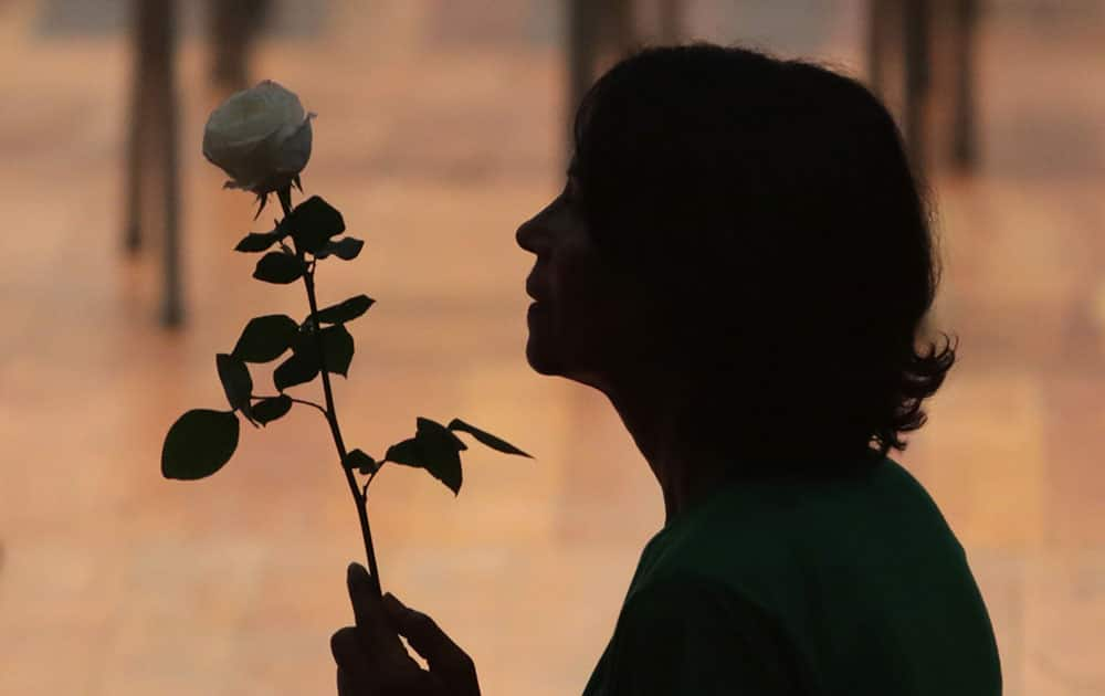 A woman carries a flower in support of Brazil's suspended President Dilma Rousseff, during a rally in Brasilia, Brazil