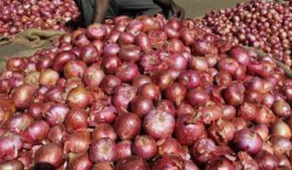 Nashik farmer gets 5 paise per kg for onions!