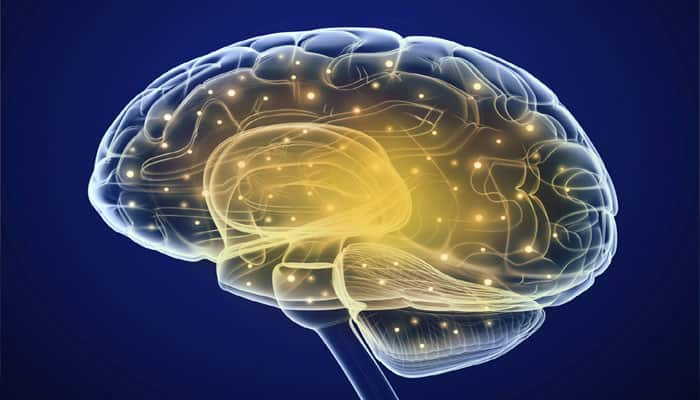 Muscle strength may help to improve brain function