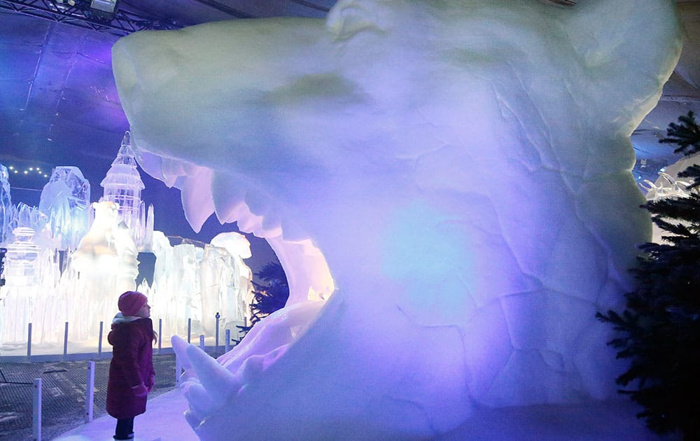 A boy looks into the mouth of a polar bear head ice sculpture